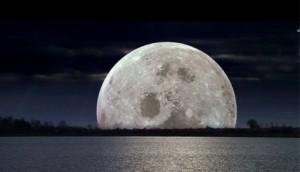 YIN Moon