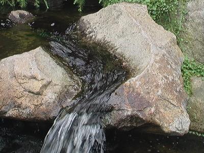 Haiku Water