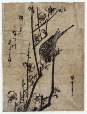 warbler on plum blossom