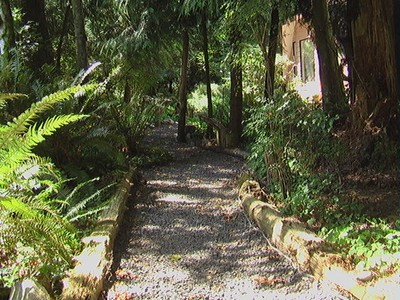 The Main Path